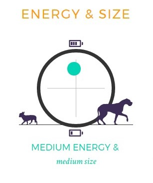 akc-energy-level-chart